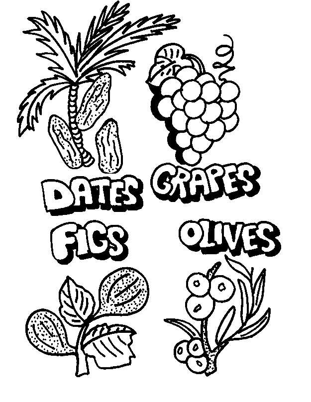 7 fruits for tu bshvat coloring pages | Fun Ways to Celebrate Tu B'Shevat - The Jewish Lady