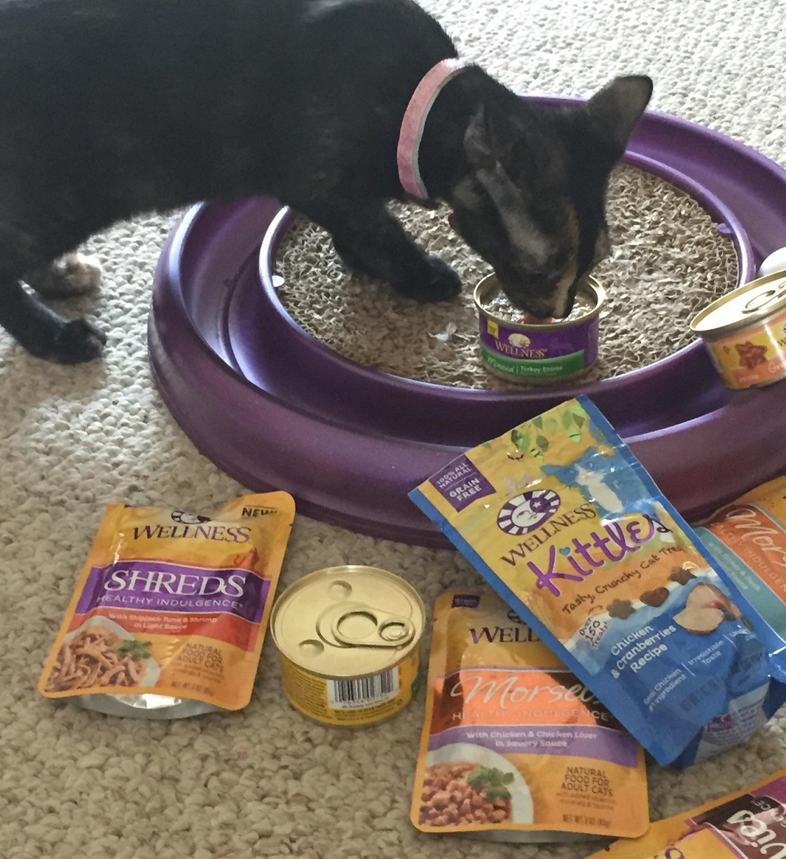 The Most Complete And Balanced Cat Food
